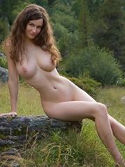 Forest erotic